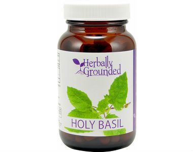 Herbally Grounded Holy Basil Review - For Improved Overall Health